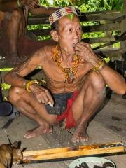 Siberut 2011 visit
