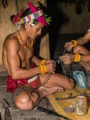 Siberut 2011